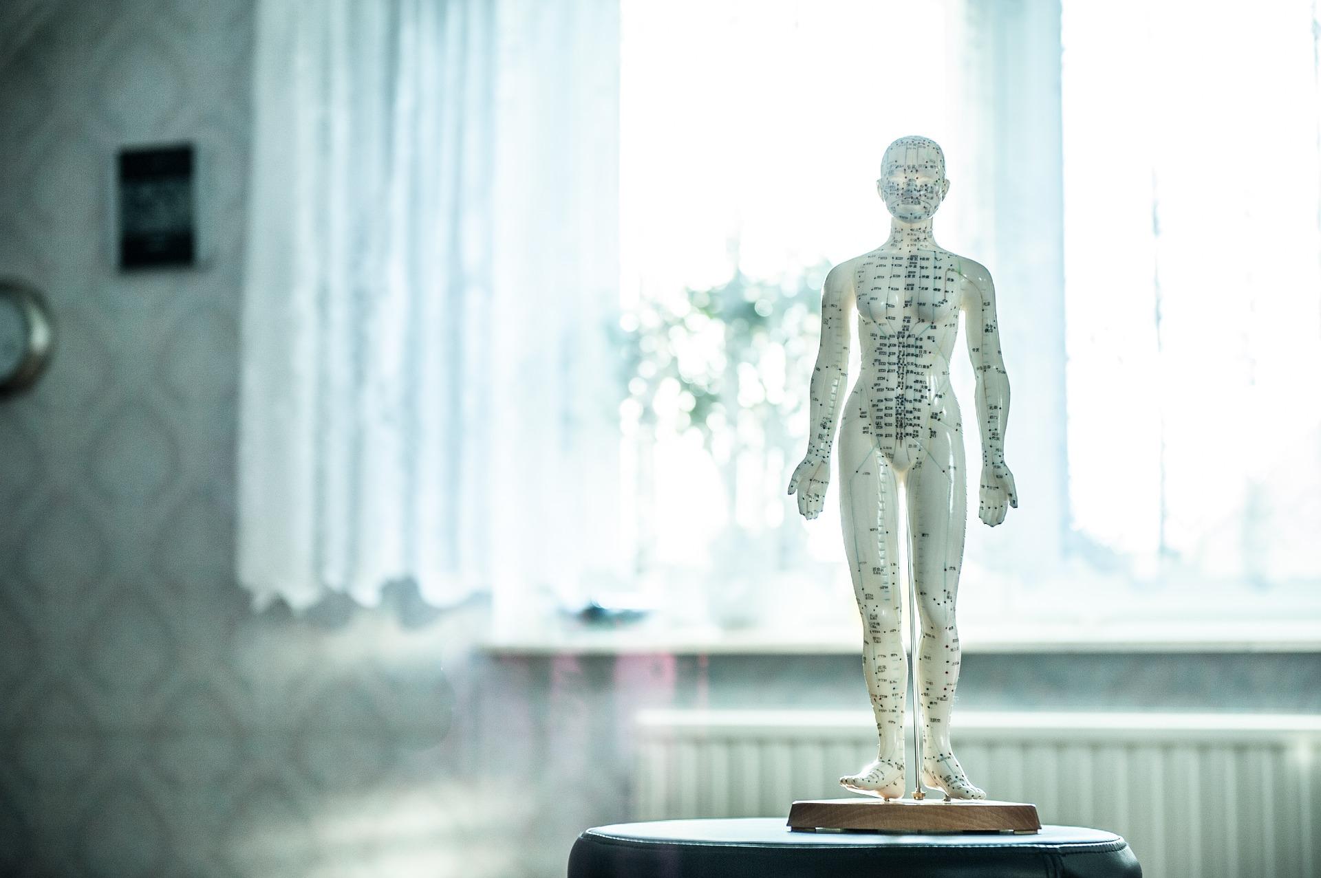 остеопат блог Лены Леоновой osteopat